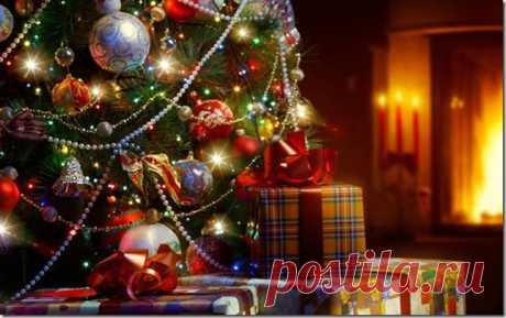 Как установить новогоднюю ёлку в доме по фэн-шуй