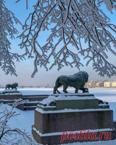 """Настоящая зима на набережной Невы. Автор фото: Erratic."
