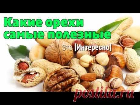 Это интересно 430: Какие орехи самые полезные и что мы о них знаем