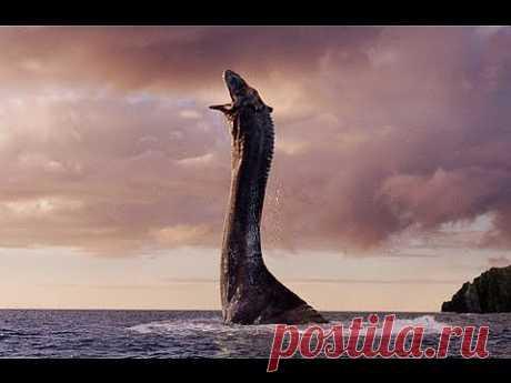 Лох-несское чудовище объявилось в Ирландии The Loch ness monster declare it in Ireland - YouTube