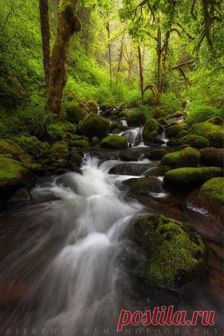 Счастье - это быть с природой, видеть ее, говорить с ней.  Vita est iustus a momento