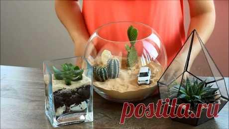Стильное украшение вашего дома - открытые террариумы с суккулентами и кактусами! Мастер-класс