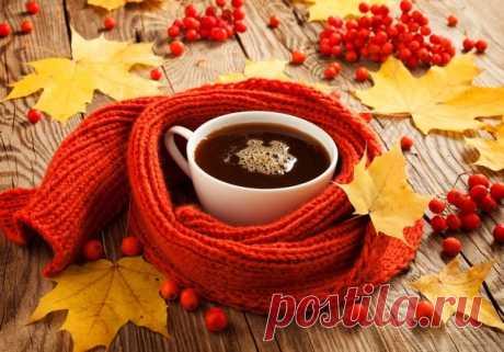 Счастье всегда заключается в простых вещах.  В таких например, как выходной, тёплый чай в холодную погоду, просто покой в вашем сердце.  И пусть не остынет в доме вашем - очаг, в кружке - чай, а в сердце - Любовь!