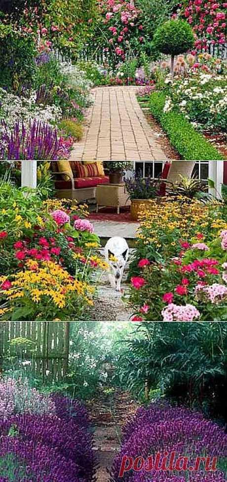 Красивые садовые дорожки среди цветов.