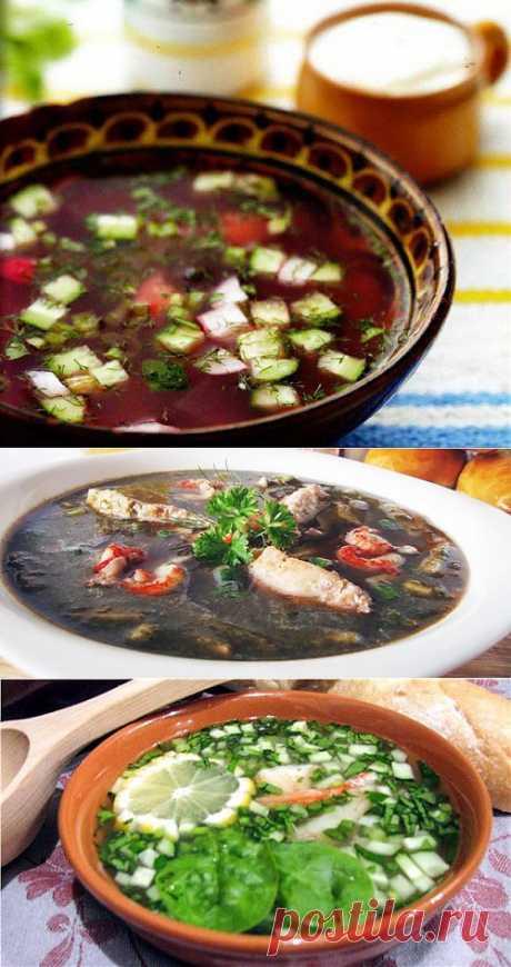 Ботвинья – варианты летнего супа / Простые рецепты