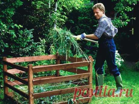 Как использовать компост в саду: его виды и описание