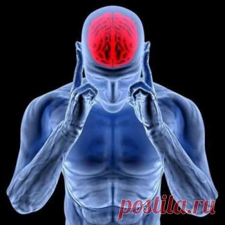 Здоровый позвоночник — основа хорошего самочувствия. Нарушение осанки, искривление позвоночника нарушают циркуляцию крови, а значит к клеткам перестает поступать полноценное питание и достаточное количество кислорода. Кацудзо Ниши, известный благодаря системе «Золотые правила здоровья», разработал короткий и простой комплекс, включающий 4 упражнения для позвоночника, позволяющий выправить осанку, поставить на место позвонки и разжать кровеносные сосуды. 1. …