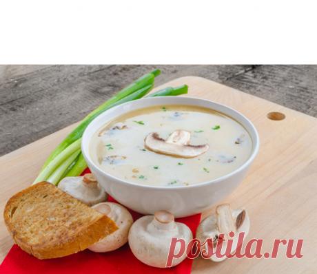 6 лучших оригинальных грибных супов