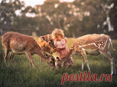 (13) Тhe beautiful world of Ludmila ( Красивият свят на Людмила )