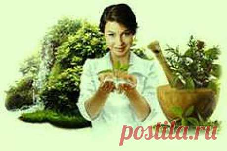 Main page - Traditional medicine and health of the person