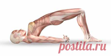 ПИЛАТЕС: лучшие упражнения для идеальных ног и ягодиц