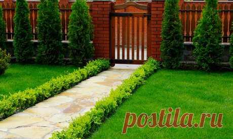 Как красиво оформить участок перед домом | Красивый сад | Яндекс Дзен
