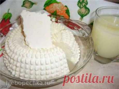 Домашний сыр натуральный, мягкий (на пепсиновой закваске) - ХЛЕБОПЕЧКА.РУ