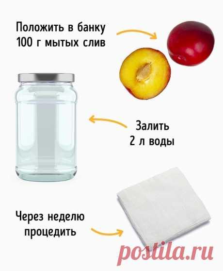 7 bebidas fáciles, que ayudarán despedirse del peso excesivo