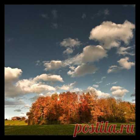 Золотая осень. 117 фото и несколько простых советов | Lightroom.ru