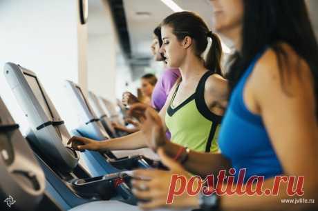 Кардиотренировки для похудения и здоровья: как правильно тренироваться | Высоцкая Life