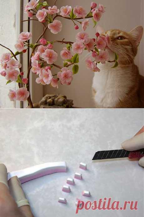 Мастер-класс цветы сакуры из холодного фарфора.