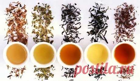 10 правил вкусного чая. — Мегаздоров