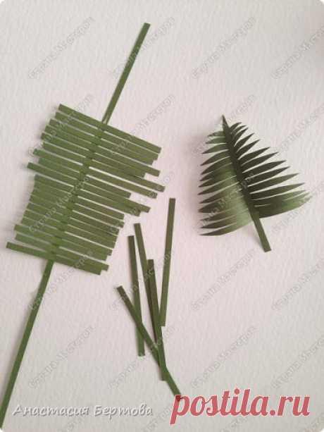 Las hojas del papel. Las ideas diferentes