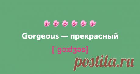 Не просто милашка. 15 новых английских слов на замену cute — Skyeng Magazine