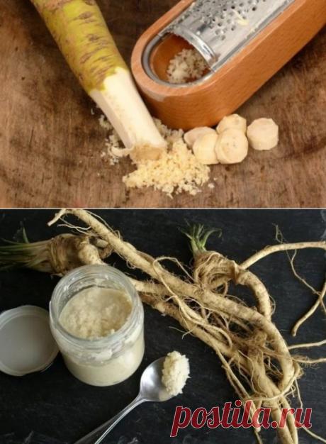 Простой корень хрена: 15 рецептов лечения самых разных болезней. От простуды до гепатита и камней в печени