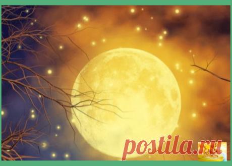 Почему стоит подготовиться заранее к Лунному затмению 5 июля 2020. Совет астролога | Звездный Дракон | Яндекс Дзен