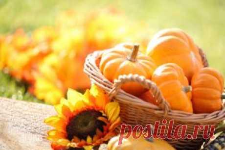 Оранжевое настроение: что приготовить из тыквы | Рецепты | КУХНЯ | АиФ Оренбург