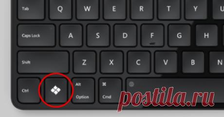 А я никогда не знала, для чего эта кнопка. Жаль! Загрузка... На клавиатуре очень много таких клавиш, которые редко используются. А всё потому, что многие не знают их предназначения. А что уж говорить о сочетании нескольких клавиш! Большинство людей привыкли …