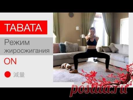 TABATA - лучшая тренировка для похудения и  ускорения метаболизма + растяжка+Мышцы тазового дна