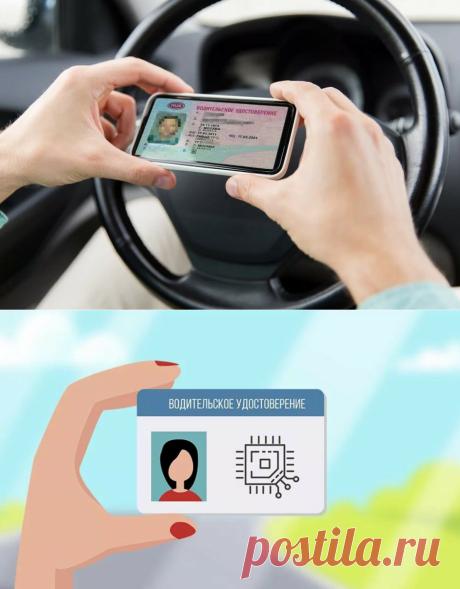 Электронные водительские права. Власти называют сроки введения | АвтоCAR | Яндекс Дзен