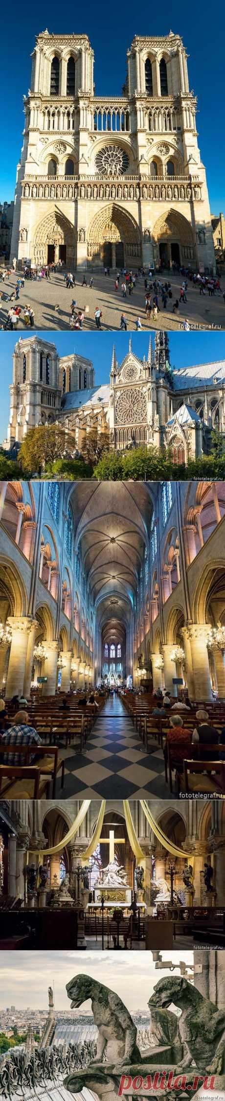 Экскурсия по собору Парижской Богоматери | ПолонСил.ру - социальная сеть здоровья