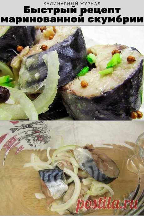 Быстрый рецепт маринованной скумбрии
