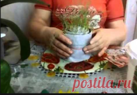 Сажаем лук семенами в улитку! Отличный проверенный способ!