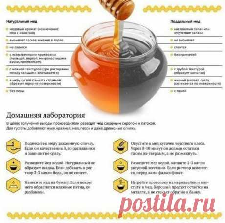 Как отличить натуральный мёд от поддельного  Сохрани, чтобы не потерять!