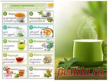 10 САМЫХ ПОЛЕЗНЫХ ЧАШЕК ЧАЯ  1. Улун (название, которое может быть на упаковке – Oolong). Чай улун улучшает метаболизм. Цветовая гамма заварки – от бледно-нефритового (как у зеленого чая) до темно-золотистого и темно-красного. Чем краснее чай, тем он больше помогает в похудении, за счет содержащихся в нем полифенолов. Четыре чашки улуна позволяют съесть 1 небольшой десерт без вреда для фигуры.  2. Пассифлора (название, которое может быть на упаковке – Passion flower). Этот...