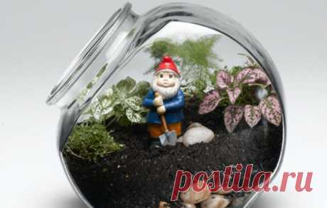 florarium the hands: 20 thousand images are found in Yandex. Pictures