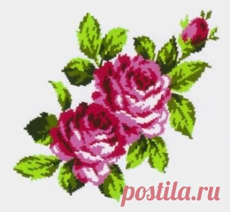 K296 Букт роз купить. Фото