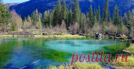 Гейзеровое озеро, Акташ (Алтай). Фото, где находится на карте и как добраться, отзывы — Туристер.Ру
