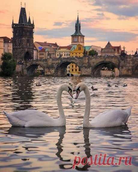 Вечерняя Прага..