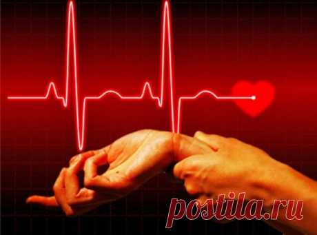 14 фактов о сердце, которые заставляют задуматься — Интересные факты