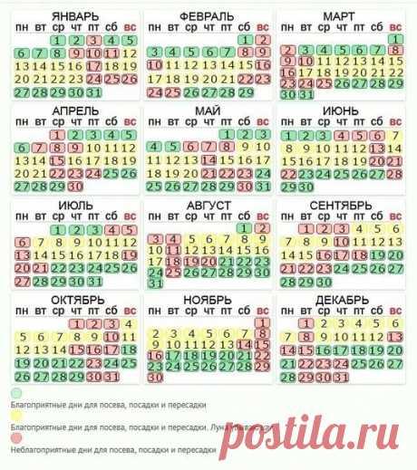 Календарь на 2020 год для посева,посадки и пересадки. На заметку