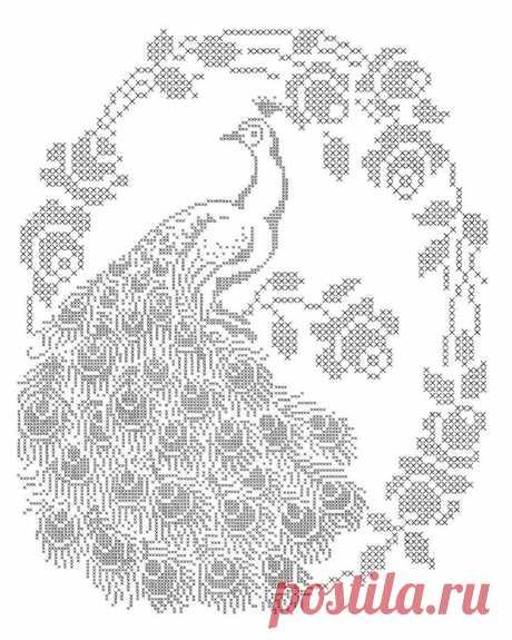 узор филейка павлин — Яндекс: нашлось 536тыс.результатов