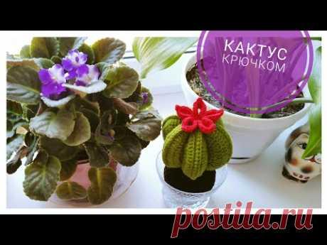 ЦВЕТУЩИЙ КАКТУС КРЮЧКОМ 🌵Crochet cactus