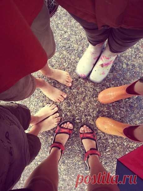 ТП №18 - Блоги на ВетоНет