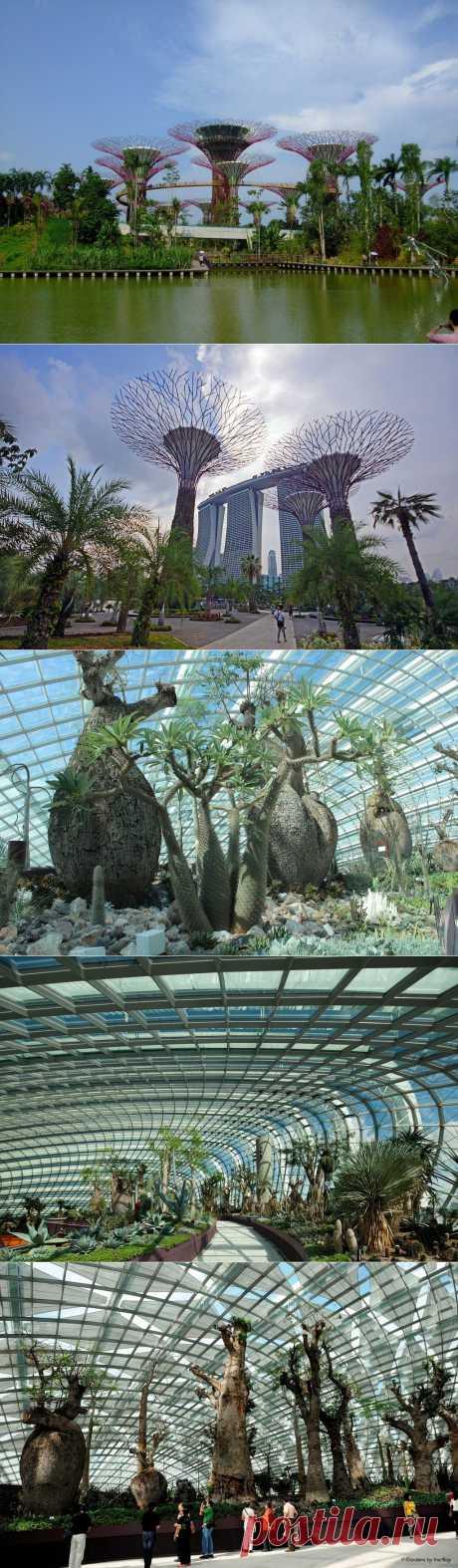 Прибрежные сады Сингапура