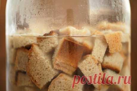 Хлеб как удобрение для огорода: рецепты для подкормки Каждый овощевод мечтает любыми путями увеличить урожайность своих растений на грядках, находя новые рецепты подкормок для зеленых насаждений или пользуясь старыми, проверенными временем способами. В о...