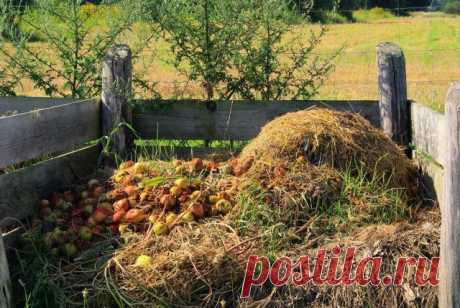 Whether it is possible to put rotten apples and other begun to rot products in a compost pit?