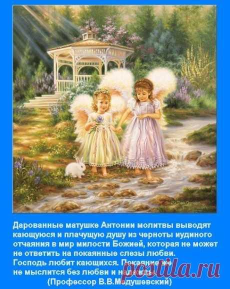 Дарованные матушке Антонии молитвы выводят кающуюся душу из черноты иудиного отчаяния в мир милости Божией...