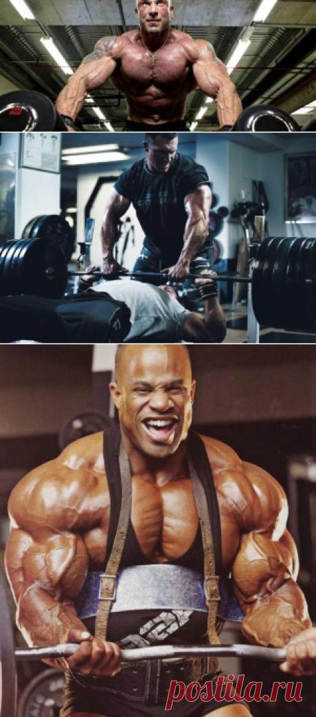 Силовая тренировка для мужчин | Программа Упражнения | Sport - My Way