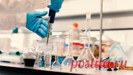 В Израиле заявили, что нашли лекарство от рака